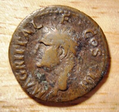 M Agrippa AE AS Roman coin struck by Tiberius / Caligula