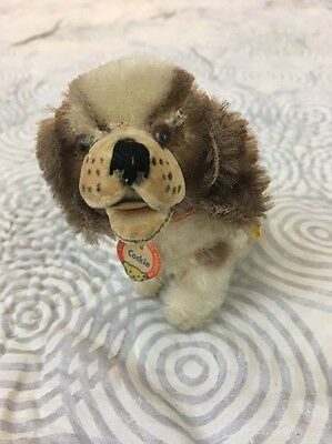 Steiff 1950's Cockie Cocker Spaniel Dog Mohair Germany Puppy Metal & Paper Tag