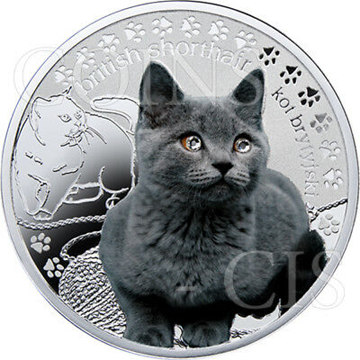 Niue 2014 1$ Mans Best Friends Cats - British Proof Silver Coin with Swarovski