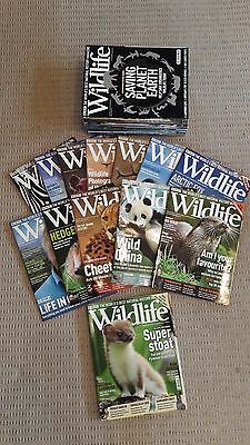 BBC Wildlife Magazines - 54 Issues in excellent condition