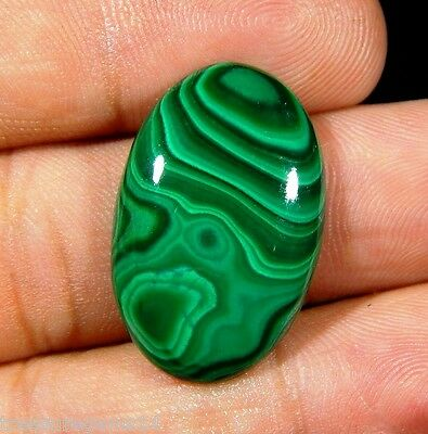22 Ct Gorgeous Natural Designer Deep Green Malachite Oval Cabochon Gemstone M248