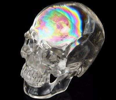 """Awesome Rainbow Clear Huge 5.5"""" QUARTZ ROCK CRYSTAL Carved CRYSTAL Skull #812"""