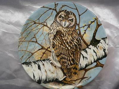 Coalport China Collectors Plate SHORT EARED  OWL  The Wise Owl Michael B. Sawdy