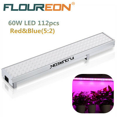 60W Grow Light Led Luz Interior Iluminación LED Cultivo para Plantas Hidropónico