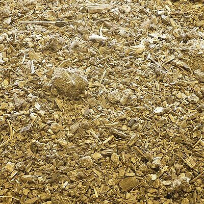 BUTTERBUR ROOT Petasites spp DRIED HERB, Loose Whole Herbs 50g