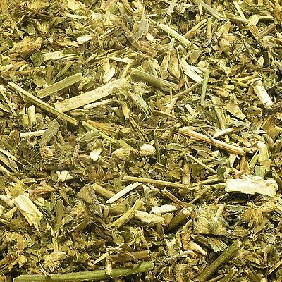 HEMP NETTLE STEM Galeopsis tetrahit l. DRIED HERB, Bulk Natural Tea 100g