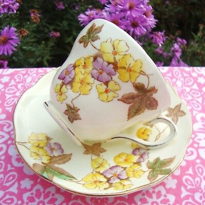 Stunning Vintage Foley E Brain Hand Enamelled Tea Cup & Saucer - Pattern No 2109
