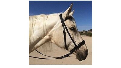 NEW bitless bridle leather hazelnut tan cob size