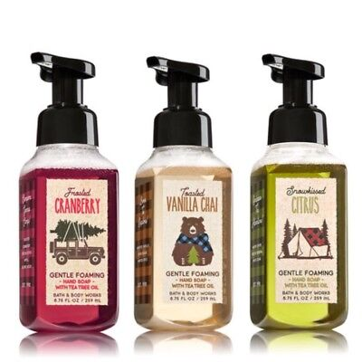 Bath And Bodyworks Gentle Foaming Hand Soap - NEW Winter 2017 Selection
