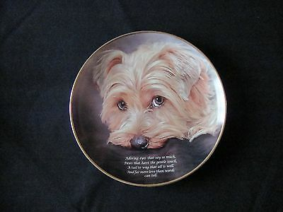 Danbury Mint  Poetry of the YORKSHIRE TERRIER  Adoring Eyes