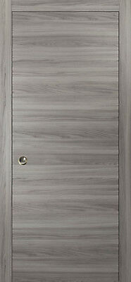 Planum 0010 Interior Pocket Sliding Closet Door Ginger Ash with Frames Track