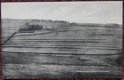 Terraces at Borcovicus Housesteads Roman Vintage Postcard Hexham Northumberland