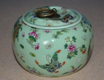 Exquisite Chinese Famille Rose Porcelain Jar Marked Qianlong Rare N6581