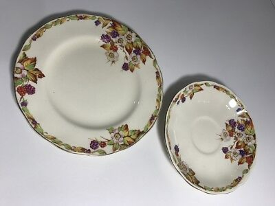 Grindley Creampetal 'wild Berry'  || Made In England || Saucer & Plate - Spares