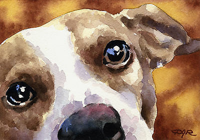 JACK RUSSELL TERRIER Painting Dog 8 x 10 ART Print Signed by Artist DJR