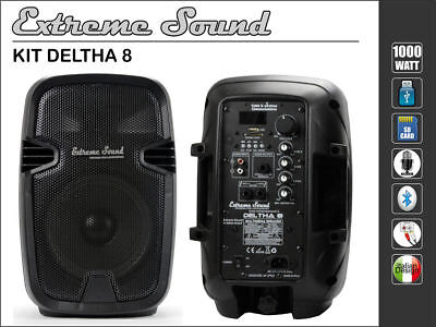 2 CASSE AMPLIFICATE 1000W Extreme Sound USB Bluetooth x STUDIO KARAOKE DELTHA 8