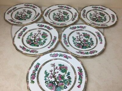 "Duchess Indian Tree 6 x Salad / Dessert Plates 8.1/4"" Look unused Mint"