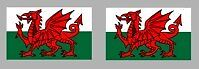 2x WELSH WALES FLAG DECALS / STICKERS