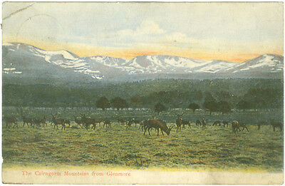 Vintage postcard. The Cairngorm Mountains from Glenmore