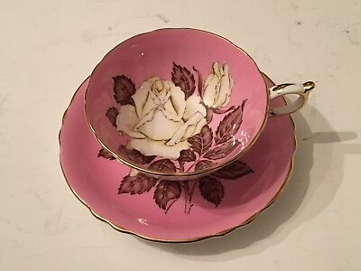 Antique Pink Queen Mary Paragon Cup & Saucer Handpainted White Cabbage Rose