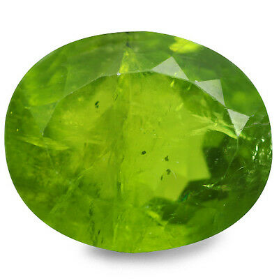13.52 Ct Attractive Rare Top Grade Genuine 100% Natural Green Peridot