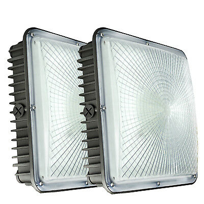 LED Canopy Light 2 Pack 45Watt (150W-225W Equivalent) Outdoor Commercial Fixture