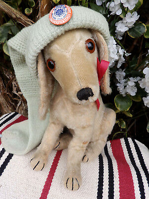 Endearing 1930s Steiff Treff Dog with earbutton