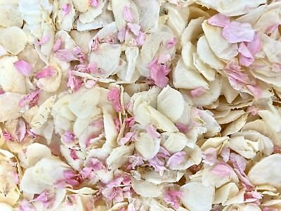 Natural Biodegradable Wedding Confetti Pink Ivory Petals, Dried Vintage Flower