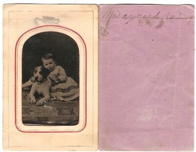 Tintype Child w/ Dog Hound Hunting Sitting on Oriental Carpet Rug Cival War Era