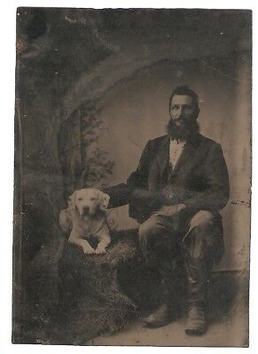 Tintype Man with Dog Hound Hunting Gun Dog Civil War Era