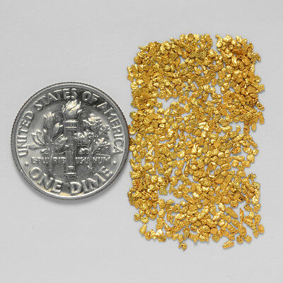 0.8371 Gram Alaskan Natural Gold Nuggets - (#20882) - Hand-Picked Quality