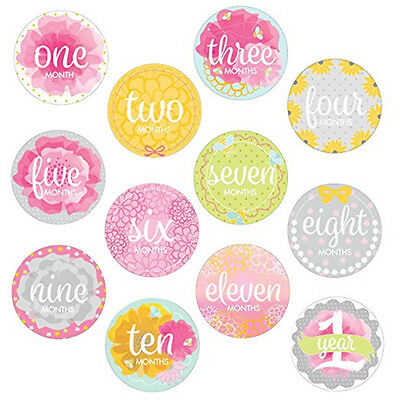 Baby Girls Monthly Milestone Belly Stickers Photo First Year Pink
