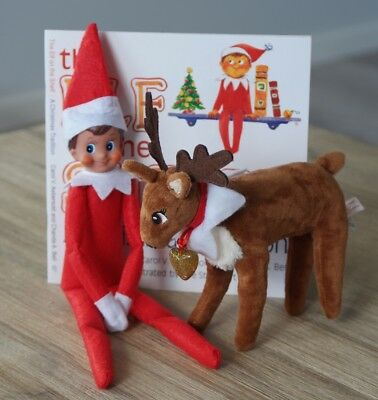 Red Boy On The Shelf Elf With Pet Reindeer & softcover Christmas Book