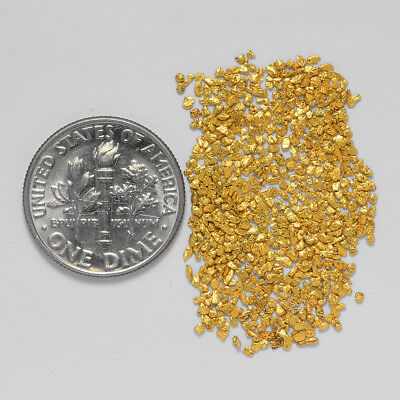 0.6048 Gram Alaskan Natural Gold Nuggets - (#20971) - Hand-Picked Quality
