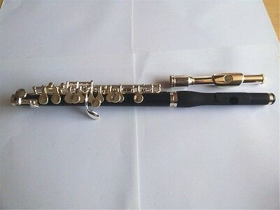 HIGH-GRADE COMPOSITE WOOD PICCOLO - with TWO HEADJOINTS : Metal & Composite Wood