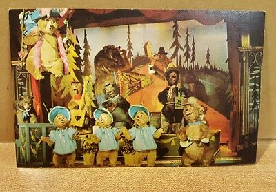 Disneyland Country Bear Jamboree Postcard