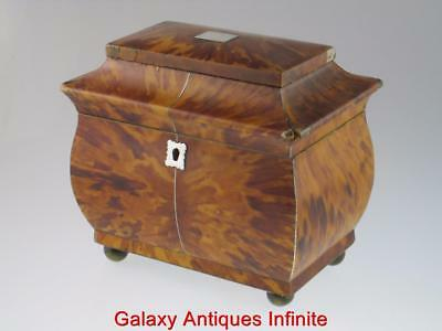 Rare Large Georgian Antique 19th Century Faux Tortoiseshell Tea Caddy Circa 1820