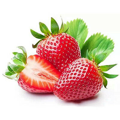 150Pcs Giant Red Strawberry Seeds Garden Fruit Plant Rare And Delicious