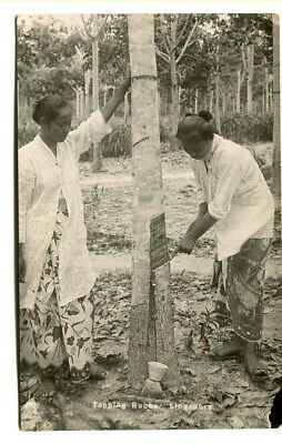 "Malaya – Singapore 1922 unposted photographic b/w PPC ""Tapping Rubber"""
