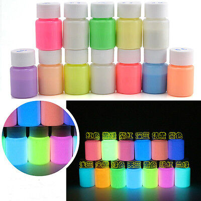 20g Glow in the Dark Acrylic Luminous Paint Bright Pigment Party Decor Well