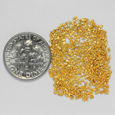 0.7730 Gram Alaskan Natural Gold Nuggets - (#21021) - Hand-Picked Quality
