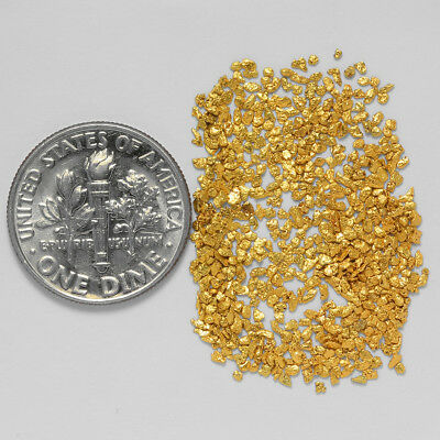 0.7716 Gram Alaskan Natural Gold Nuggets - (#21064) - Hand-Picked Quality