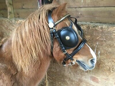 Pony Driving Harness leather