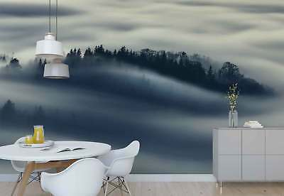 Coniferous Trees Forest Mist Photo Wallpaper Wall Mural (1X-849161)