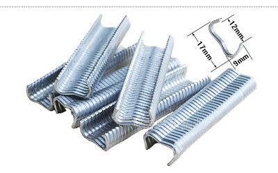 600pcs M Nail Cages Installed Clamp 2.0 Quail Tied Dove Cage Clamp Staples
