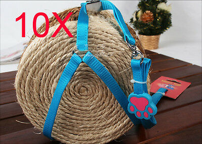 Practical Bust 25*58 CM Rope 120 CM Blue Nylon Leash Wholesale Lots 10 PCS
