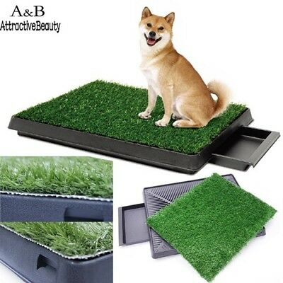 Pet Training Grass Pad Zoom Park Patch Mat Indoor 25 * 20inch New Square 3 Layer