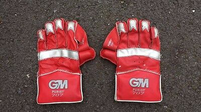 Gunn & Moore Cricket wicket keeper gloves, size Youth, used. GM Purist 707.