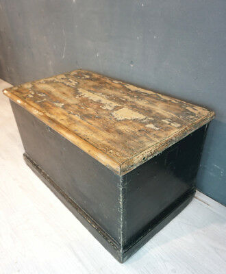 Antique pine trunk / painted trunk / coffee table (RR110)
