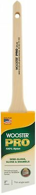 Nylon Sash Paint Brush Thin Angle Style 2 In. Feather Soft Blend Wooster Pro New